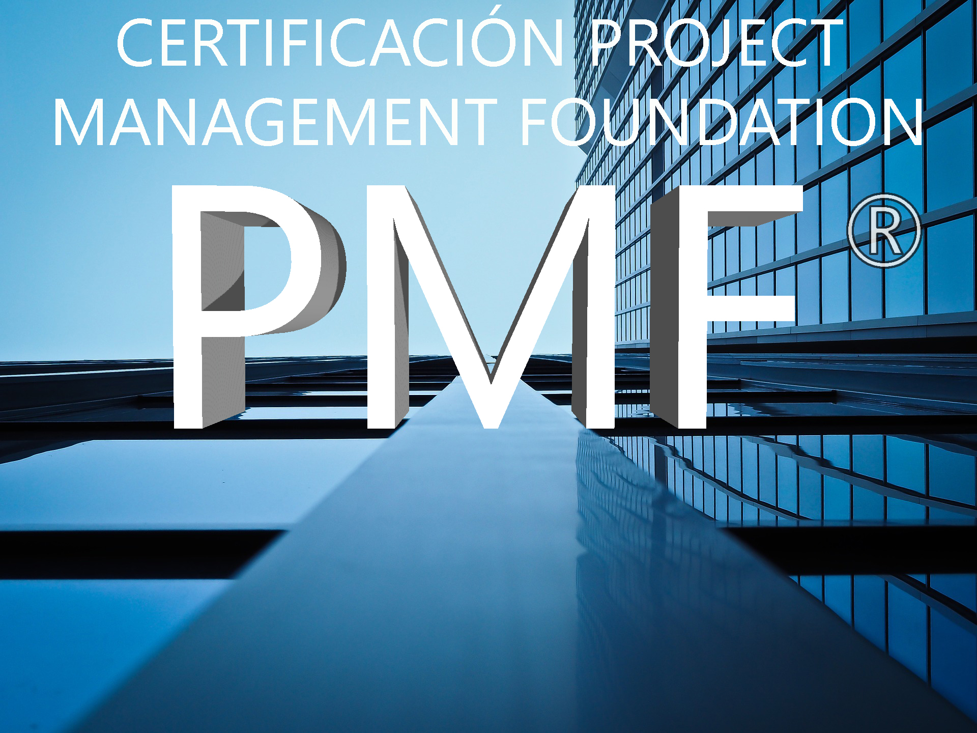 Certificación Project Management Foundation - PMF® ¡A Tu Ritmo!